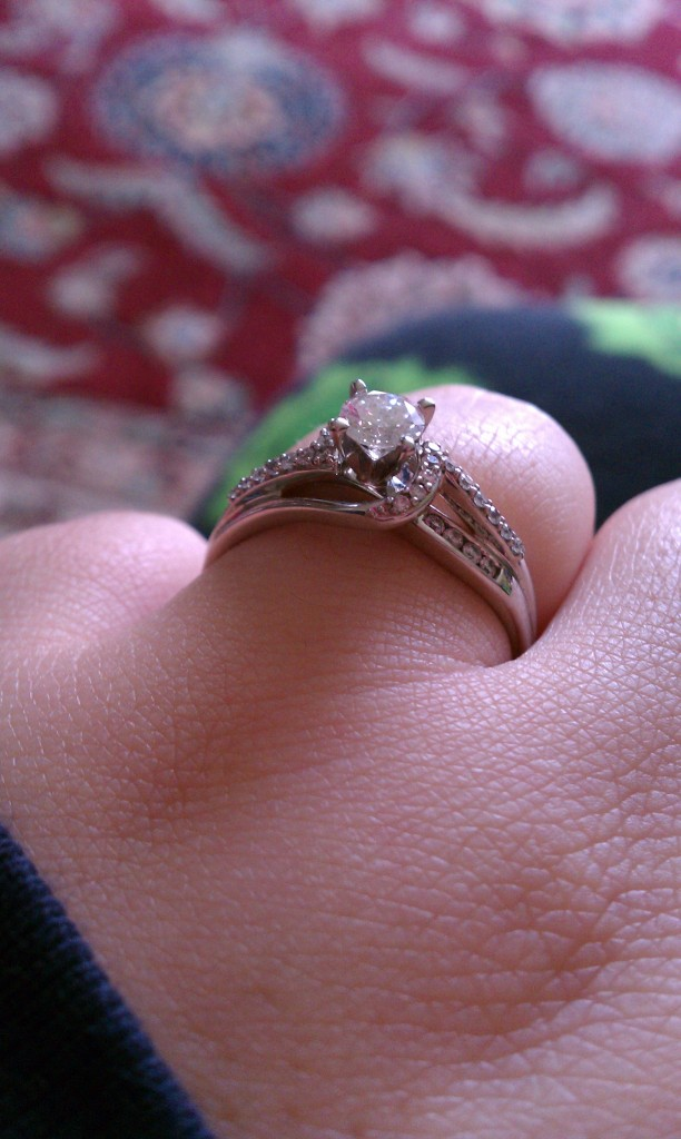 SwankyLuv: A Very Swanky Wedding: Getting Engaged