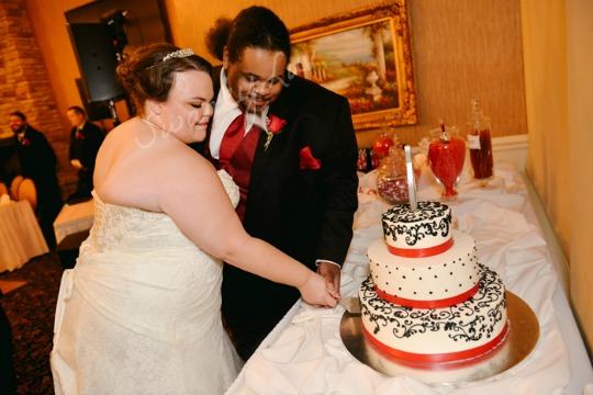 SwankyLuv: The Shedd Wedding: The Cake and Favors